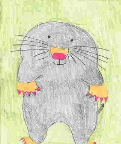 Mole der kleine Maulwurf lächelt freundlich